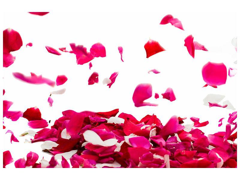 Poster Für mich soll`s rote Rosen regnen