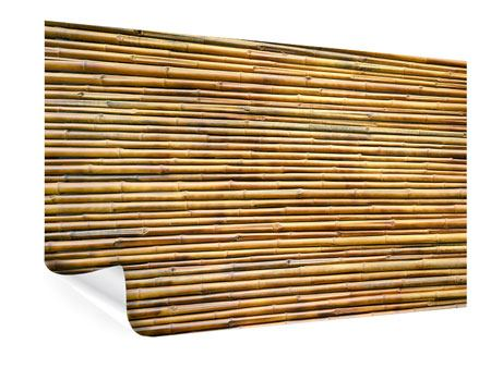 Poster Bambus