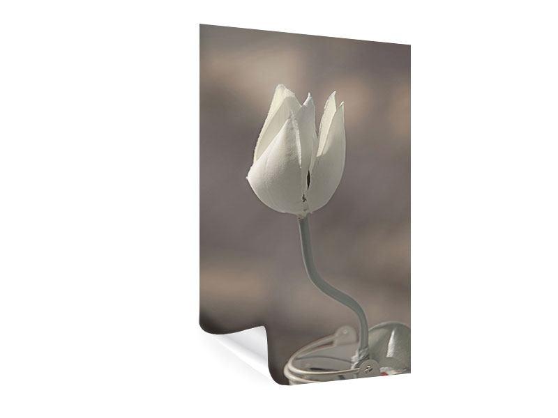 Poster Die Tulpe in Sepia