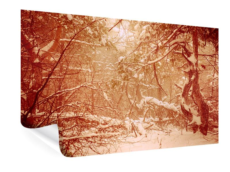 Poster Schneewald