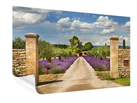 Poster Lavendel-Garten