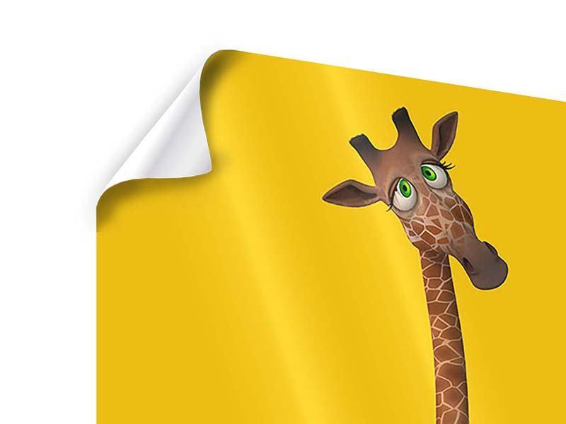 Poster Giraffensweety