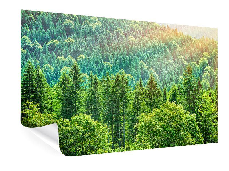 Poster Der Waldhügel