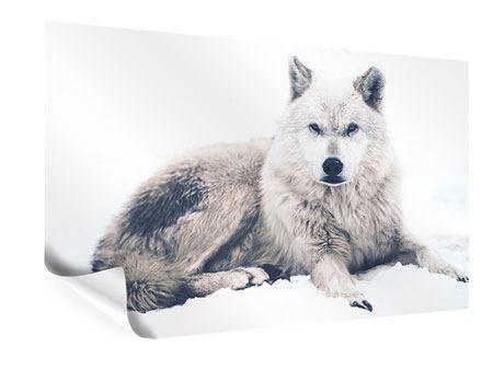 Poster Der Wolf
