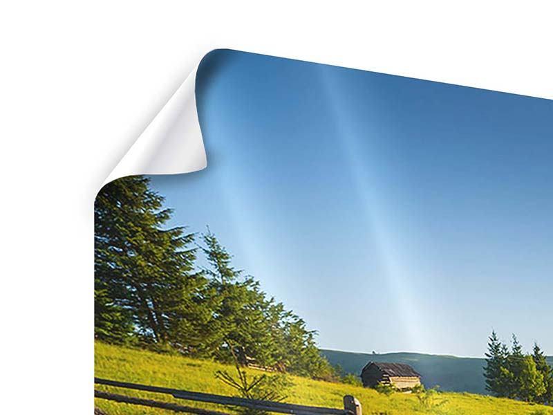 Poster Sonnenaufgang am Berg