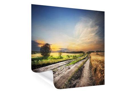 Poster Sonnenaufgang am Feld