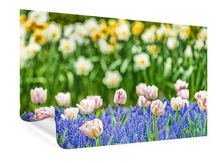 Poster Ein Garten mit Tulpen