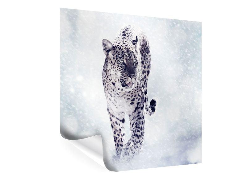 Poster Der Leopard
