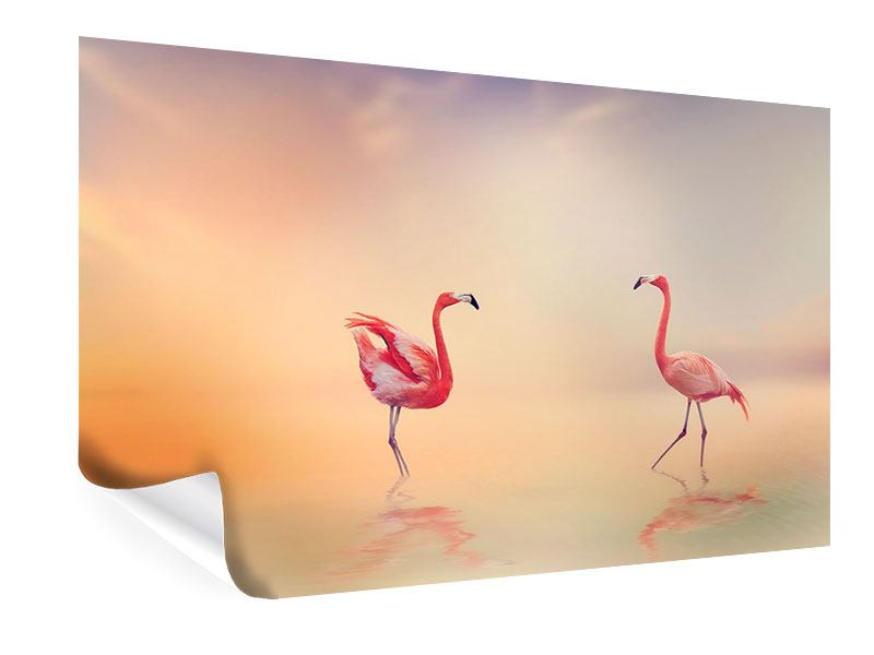 Poster Romantische Flamingos