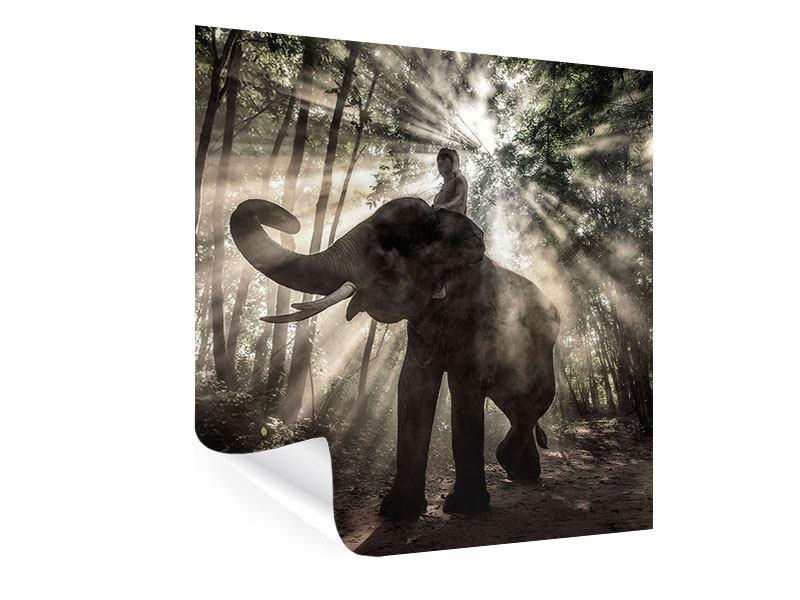 Poster Der Elefant