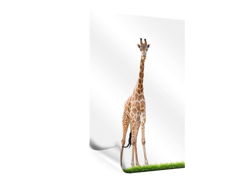 Poster Die lange Giraffe