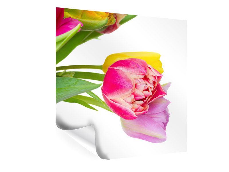 Poster Ein bunter Tulpenstrauss