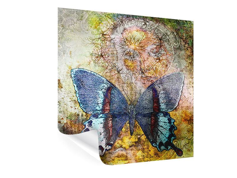 Poster Ornament-Schmetterling