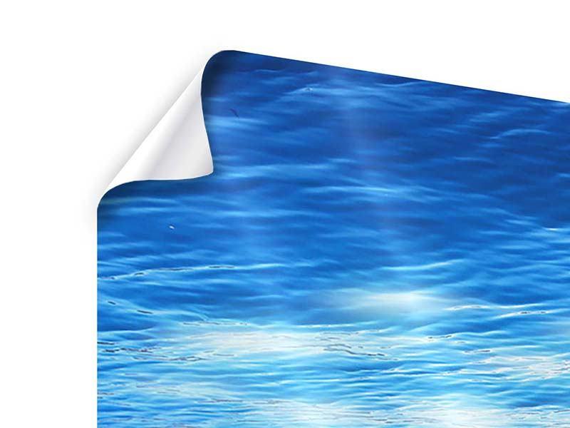 Poster Licht unter Wasser