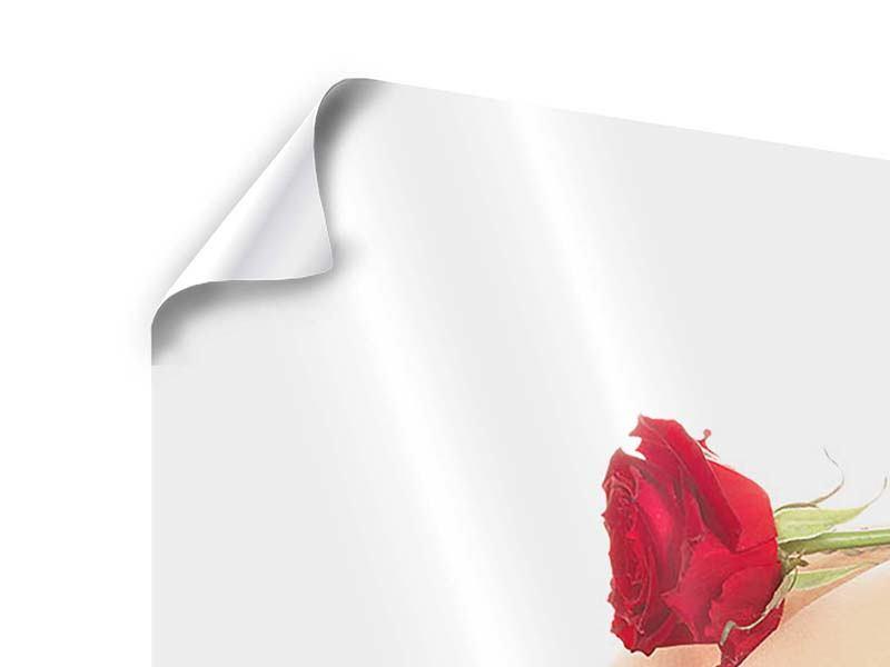 Poster Verführerische Rose