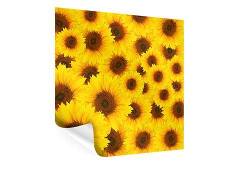 Poster Ein Strauss Sonnenblumen