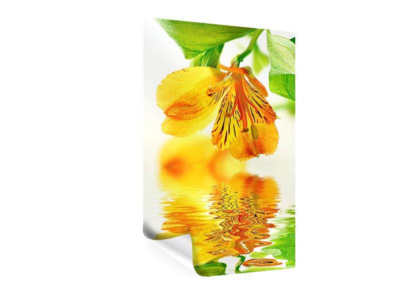 Poster Fliessende Orchideenblüte