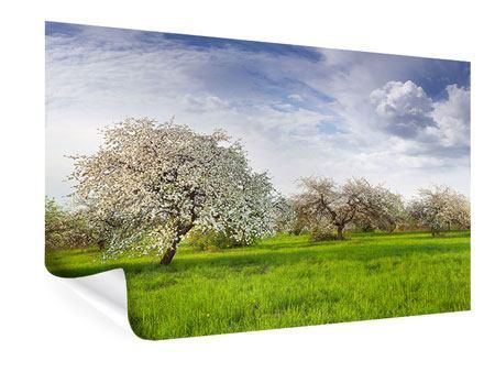 Poster Apfelbaum-Garten