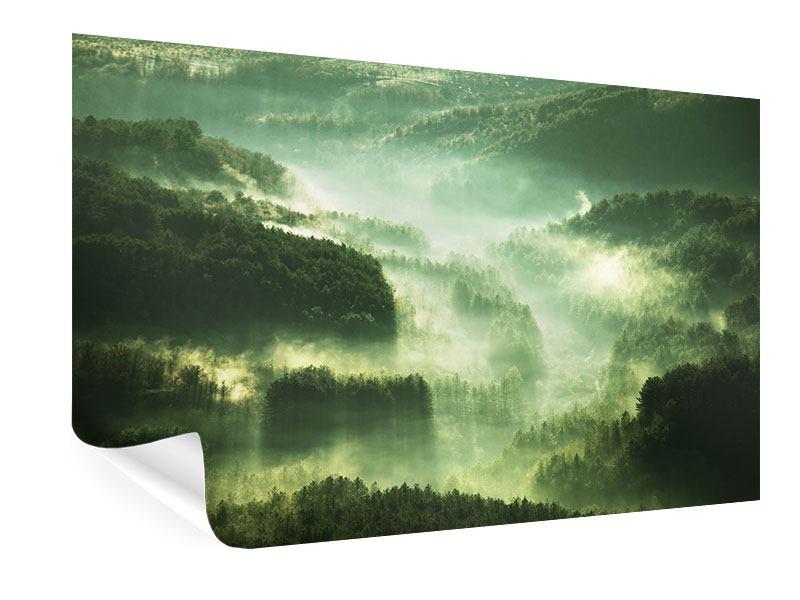 Poster Über den Wäldern