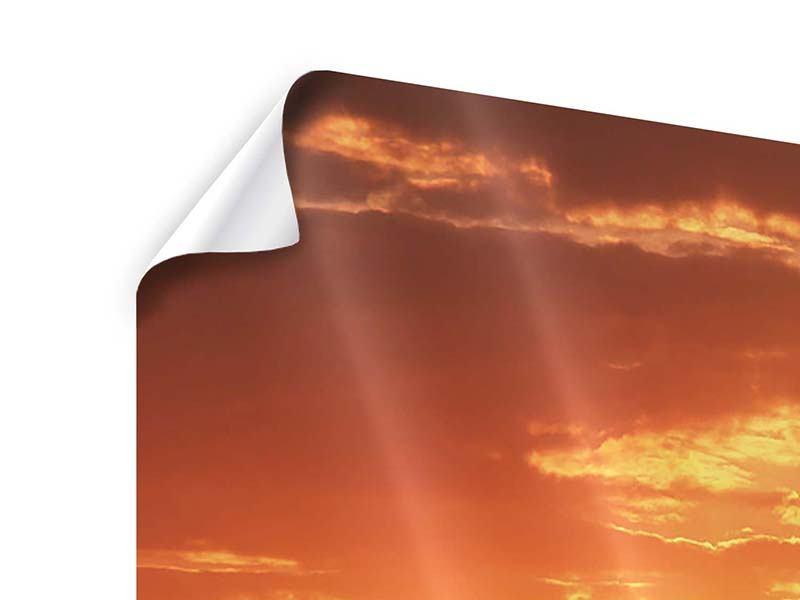 Poster Sonnenuntergang in der Savanne