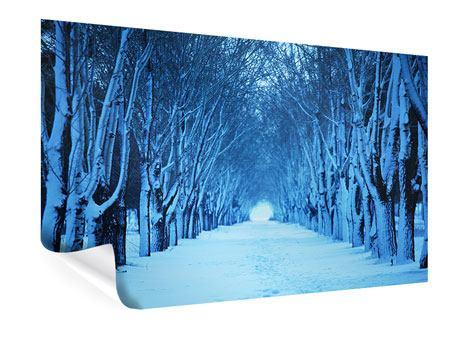 Poster Winterbäume