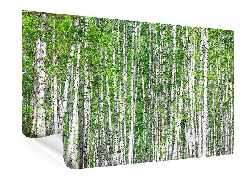 Poster Der Birkenwald