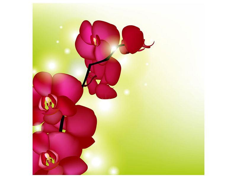Poster Heiligtum der Orchidee