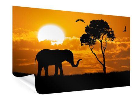 Poster Verträumtes Afrika