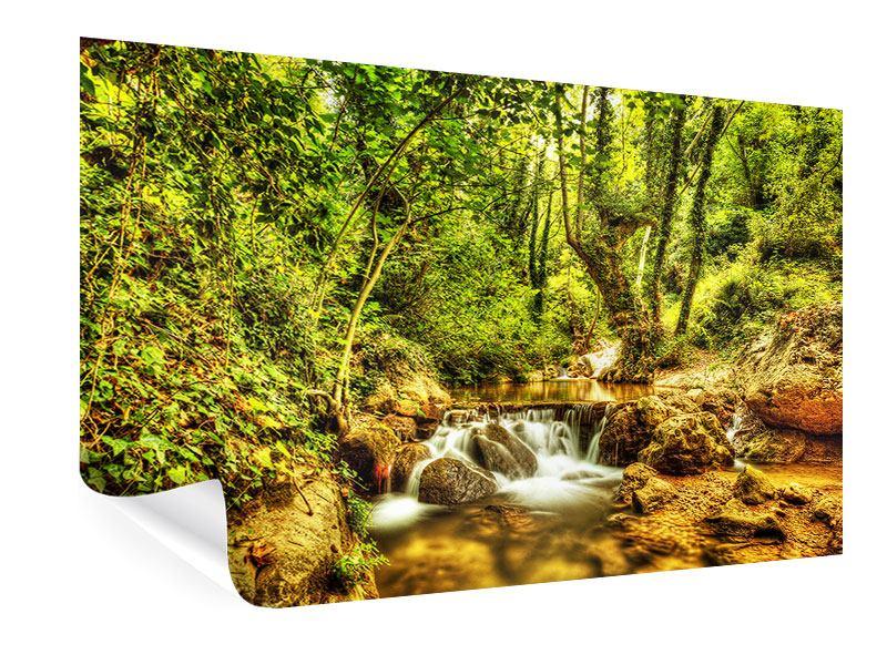 Poster Wasserfall im Wald