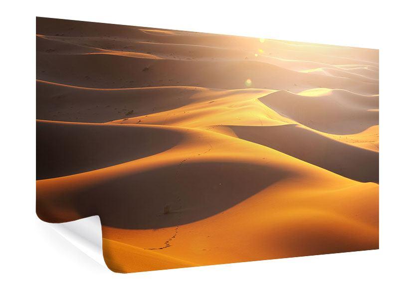 Poster Wüstenwanderung