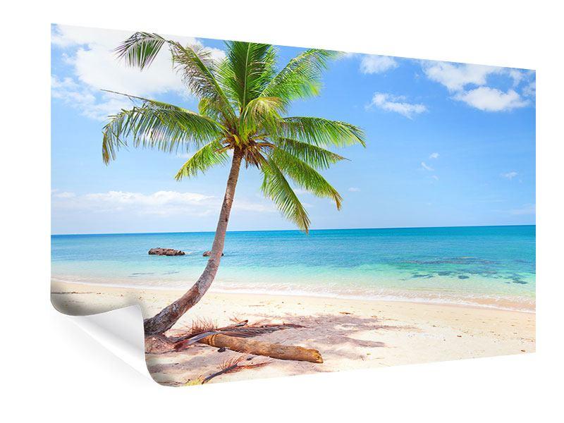 Poster Die eigene Insel