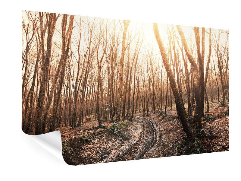 Poster Der kahle Wald