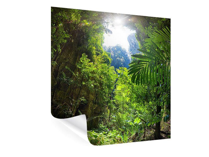 Poster Lichtung im Dschungel
