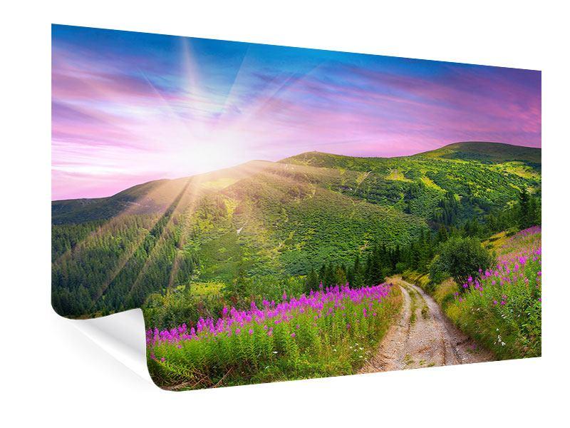 Poster Eine Sommerlandschaft bei Sonnenaufgang