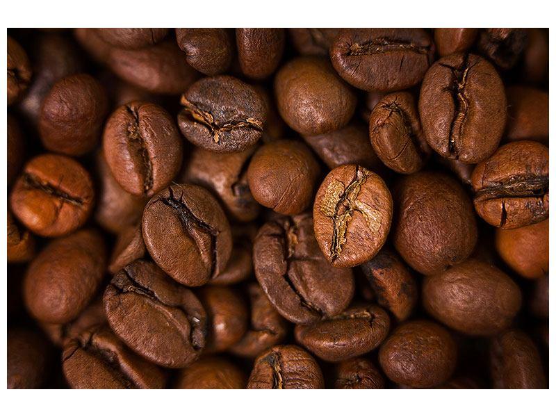 Poster Close Up Kaffeebohnen