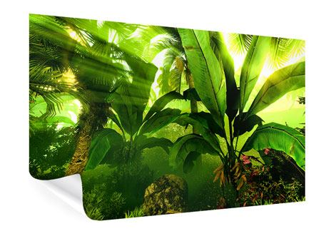 Poster Sonnenaufgang im Regenwald