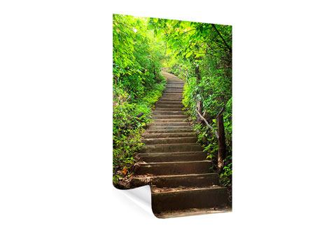Poster Waldtreppe