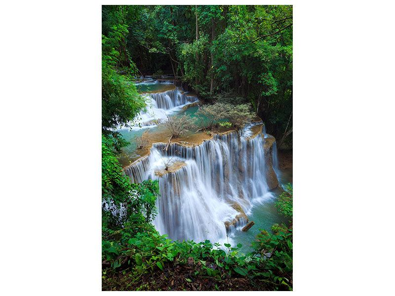 Poster Deep Forest Waterfall