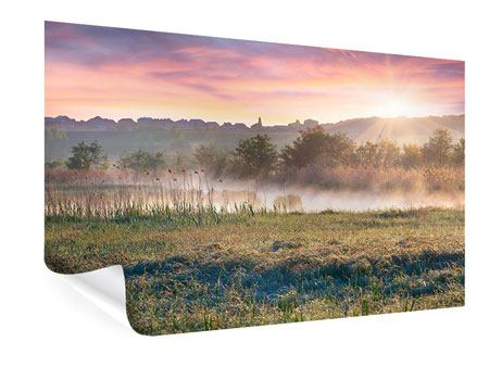 Poster Sonnenuntergang am Hügel