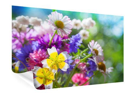 Poster XXL Gartenblumen