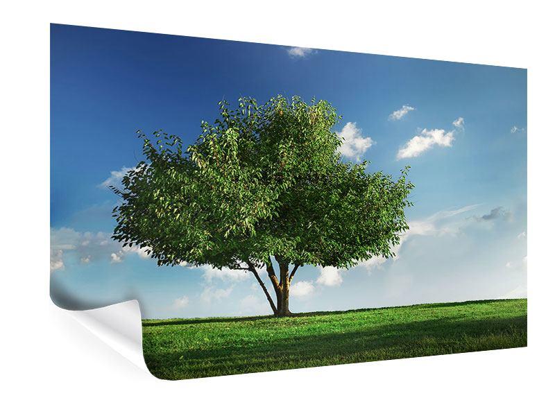 Poster Baum im Grün