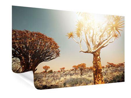 Poster Afrikanische Landschaft