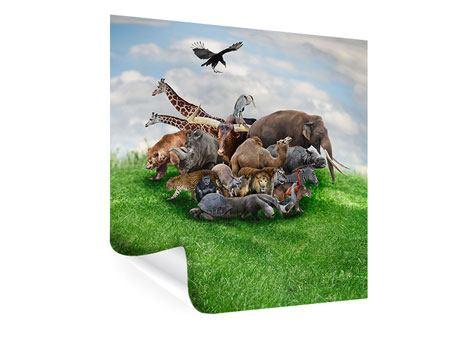 Poster Bereit für die Arche Noah