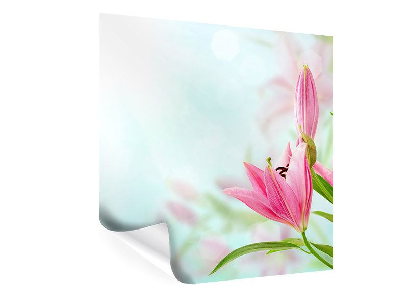 Poster Romantische Lilien