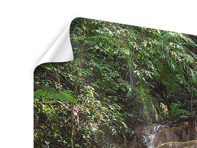 Poster Mexikanischer Wasserfall