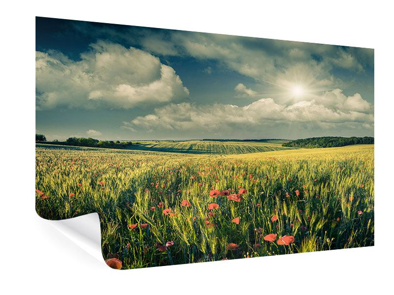 Poster Der Mohn im Weizenfeld