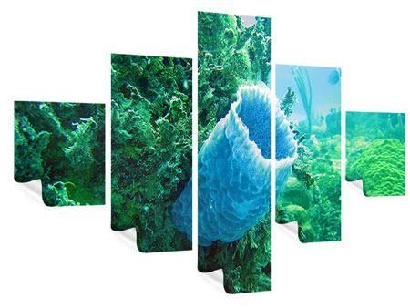 Poster 5-teilig Korallen