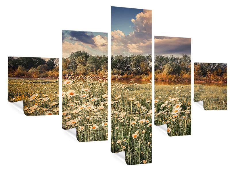 Poster 5-teilig Die Wiesenmargerite am Fluss