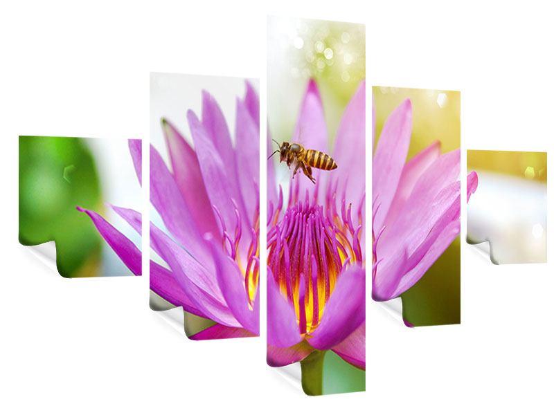 Poster 5-teilig Die Lotus mit Biene