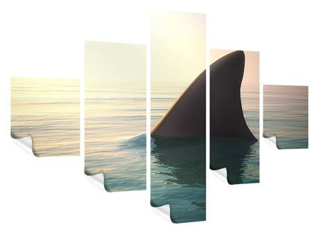 Poster 5-teilig Haifischflosse